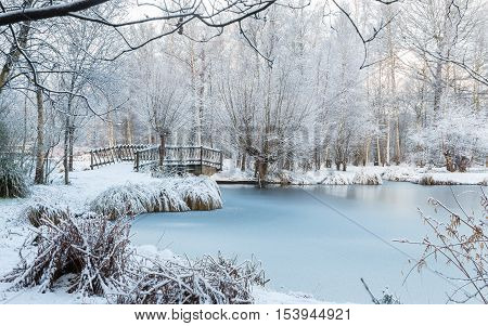 Winter scene at the botanical garden showing a bridge over frozen water and trees covered with fresh snow