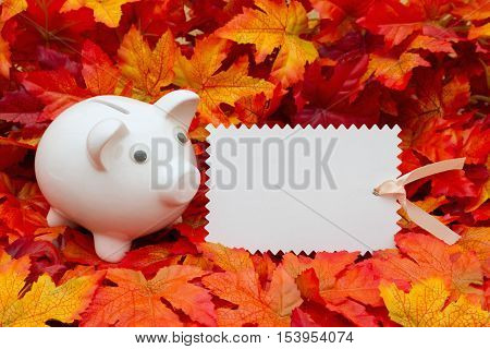 Fall Savings message Some fall leaves and a piggy bank and a blank gift tag with copy-space for your message