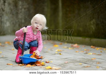 Cute Little Girl Sweeping Dry Leaves On Autumn