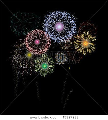 The fireworks. Vector illustration