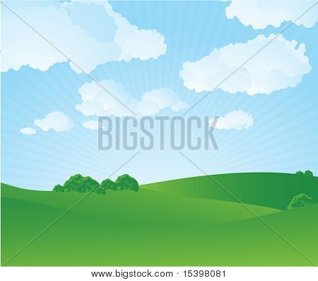 Green grass and bright sky. Vector illustration.
