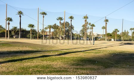 Golf Course Field Golf course white balls spread all over grass in Encanto par Phoenix downtown Arizona in Winter.