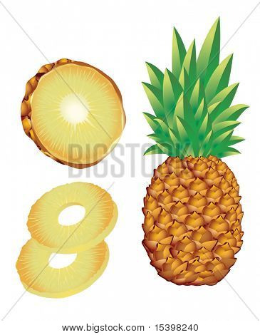 Pineapple. Vector illustration