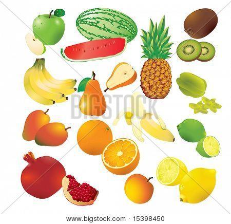 Vector set of 14 fresh fruits.
