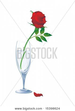 Rose in cristal glass. Vector.