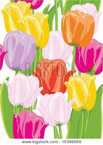 Tulpen. nahtlose Hintergrund.