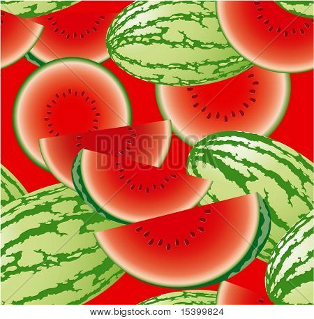 Raw watermelon vector seamless background