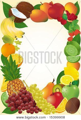 Fresh  fruits vector frame.