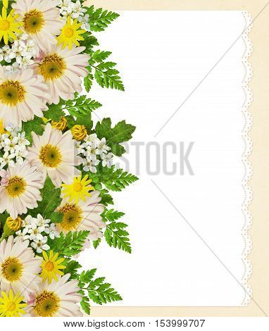 Rose asters and wild flowers edge on white and pink background