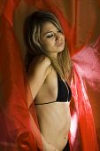 picture of hottie  - Girl in brassiere in studio on red background - JPG