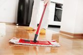 stock photo of mites  - House cleaning  - JPG