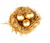 pic of priceless  - Gold eggs in the gold nest - JPG