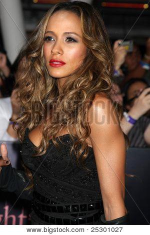 LOS ANGELES - NOV 14:  Dania Ramirez arrives at the