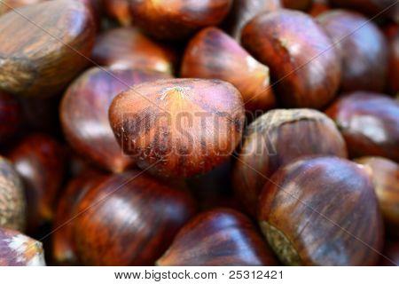 Heap Of Sweet Chestnuts