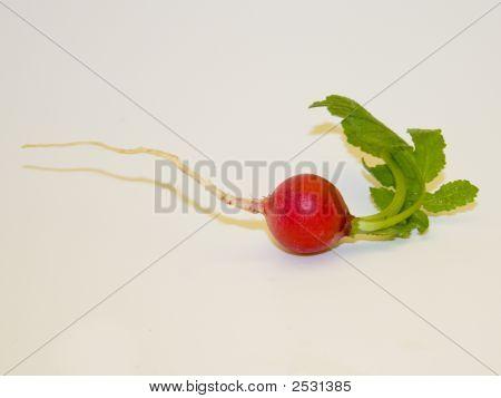 One Small Radish