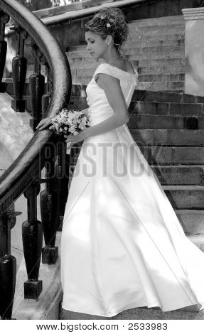 Vestido de Novia de la novia