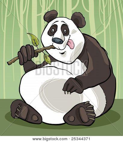 Panda-Bär