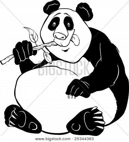Panda Bear-Malseite
