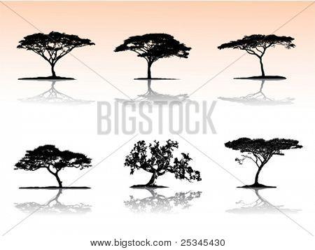 Árboles de vector con la reflexión