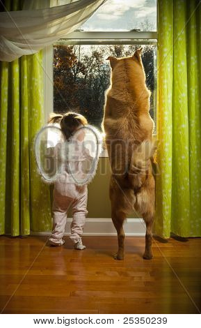 Toddler And Dog Looking Out The Window
