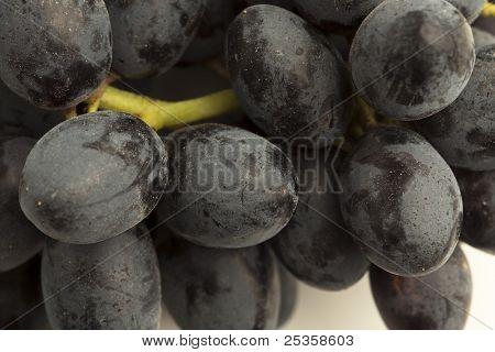 extreme closeup of a fresh black grapes