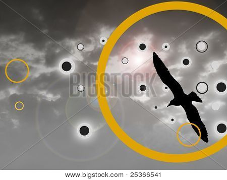black bird silhouette flying on cloudy sky background.