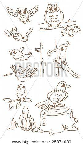 birds vector drawing cartoon set, different species