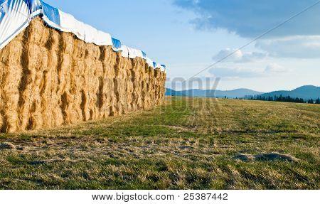 Large Hay Bails