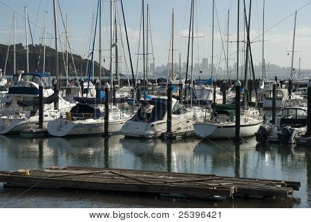 Yachts And Boats In Marina Of Sausalito, Usa