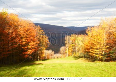 Ski Slope In The Fall