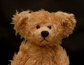 picture of teddy-bear  - teddy bear - JPG