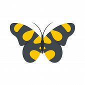 Butterfly In Wildlife Icon. Flat Illustration Of Butterfly In Wildlife  Icon Isolated On White Backg poster
