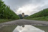 Country Road With Water Puddles, Crossing Through Green Corn Fields And An Old Tower, On A Rainy Day poster