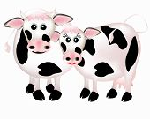 picture of moo-cow  - Two cows in love - JPG