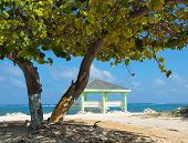 pic of collier  - Colliers Public Beach in the East End district of Grand Cayman - JPG