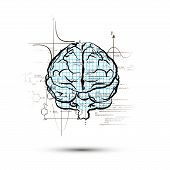 Technical Hemisphere Of Human Brain In Front View, Right Side Of Brain Functions Concept Isolated On poster