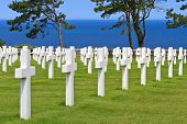 pic of ww2  - American War Cemetery near Omaha Beach Normandy  - JPG