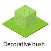 Decorative Bush Icon. Isometric Illustration Of Decorative Bush Icon For Web poster