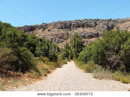 Outdoor road between two rows of bushes toward gray and orange rocks