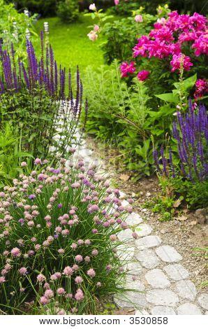 Pfad in blühenden Garten