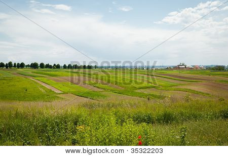 The Farming Land