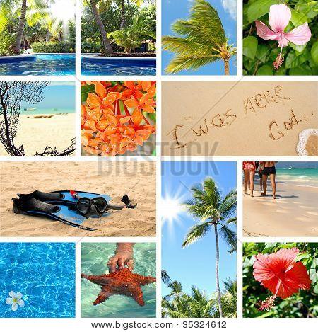 tropische Collage. exotische Reisen.