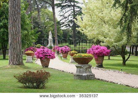 vatican gardens path