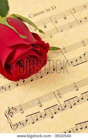 Red rose Bud auf Noten