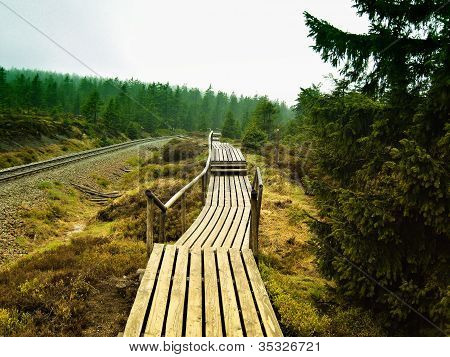 a hiking trail to the summit of the Brocken