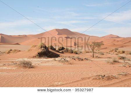 Sand Dunes of Namibia, Sossusvlei