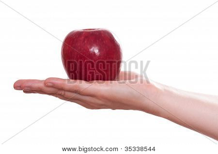 Red Apple In A Female Hand