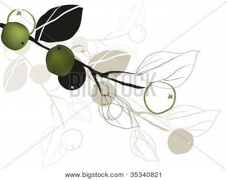 Green.eps
