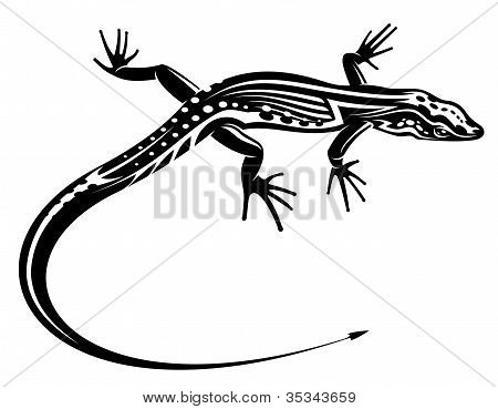 Black Lizard With Natural Decorative Ornament