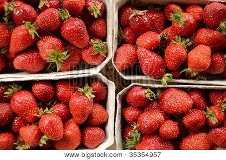 Fresas de mercado
